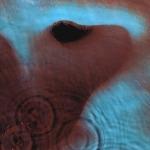 Meddle Pink Floyd kapağındaki insan kulağı