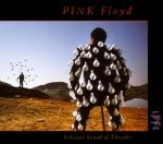 Pink Floyd'un ikinci konser albümü