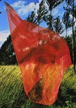 Kırmızı Tülbent