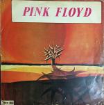 Türk Baskı Pink Floyd The Piper At The Gates of Dawn kapağı resmi
