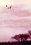 Uçan Koyunlar görselleri